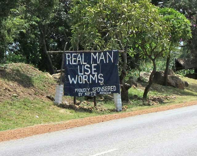 Sales-Sign-for-Fishing-Worms-Wildmoz.com
